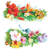 FlowerOther